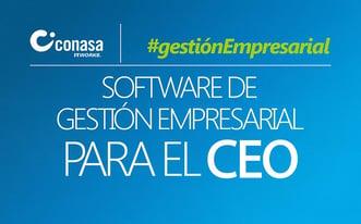 Software de gestión empresarial para el CEO
